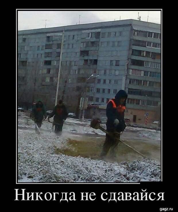 demotivator_prikol_gagz_ru_14458542