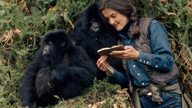 Свой среди чужих: 8 реальных историй людей, сумевших выжить вдикой природе