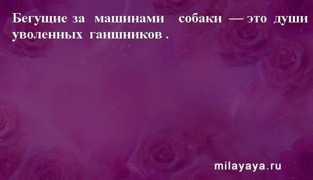 Картинки со статусами. Подборка milayaya-status-milayaya-status-30231112102020-18 картинка milayaya-status-30231112102020-18