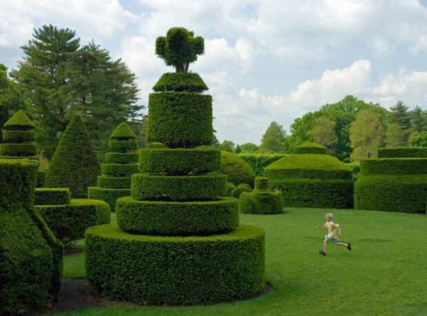 Ladew Topiary Gardens-2013-08-14 (9)