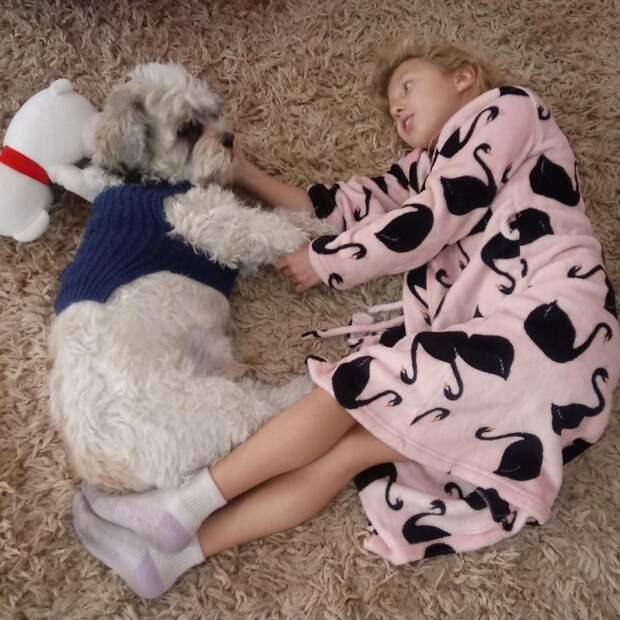 9. Сладкая парочка животные, животные и дети, кошки, питомцы, собаки, фото