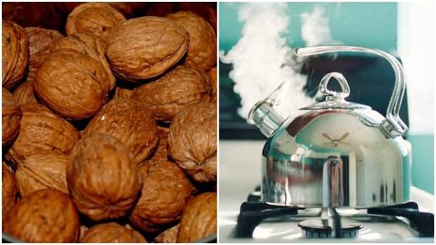 Чтобы скорлупа от грецких орехов легко очищалась, необходимо залить их кипятком / Фото: ведомостинсо.рф