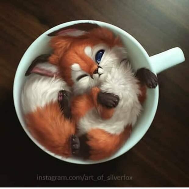 Невероятно милые животные