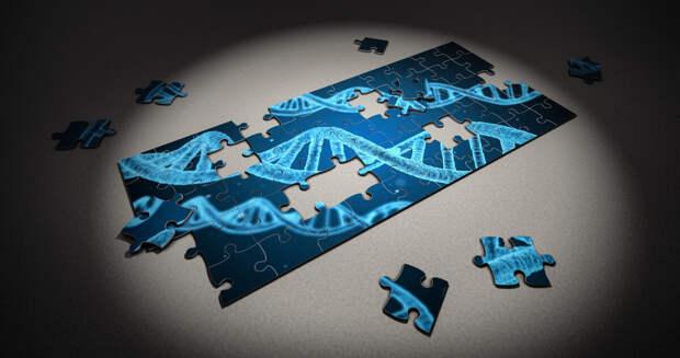Восстановление ДНК в 105 лет