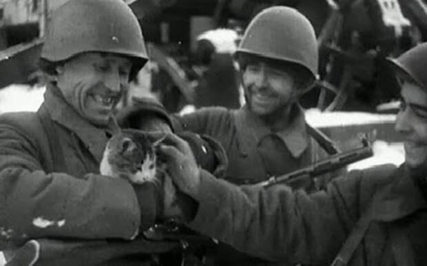 Как животные спасали красноармейцев на фронте