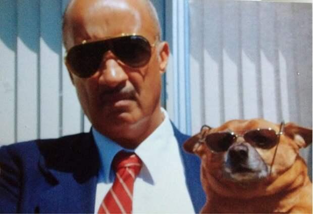 15 отцов, которые были категорически против «этой чертовой собаки» в доме