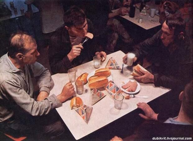 Продовольственная независимость России в свинине и мясе птицы