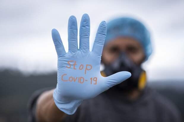 В России за сутки выявлено 22 572 новых случая коронавируса