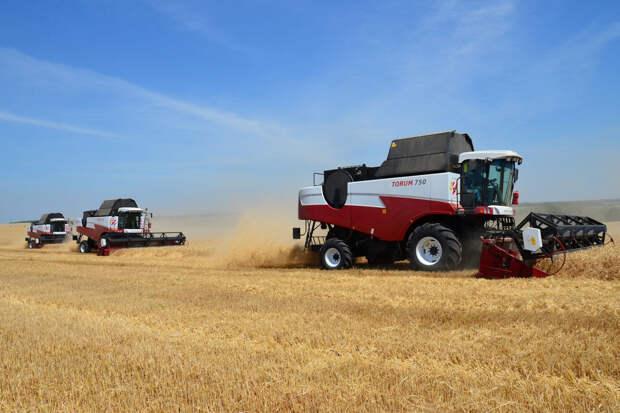 В Ростовской области убрали более 7 млн тонн зерна