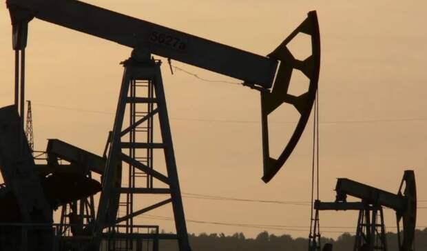Перевод нефтянки нановый налоговый режим возможен, нопосле оценки его эффективности