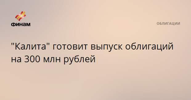 """""""Калита"""" готовит выпуск облигаций на 300 млн рублей"""