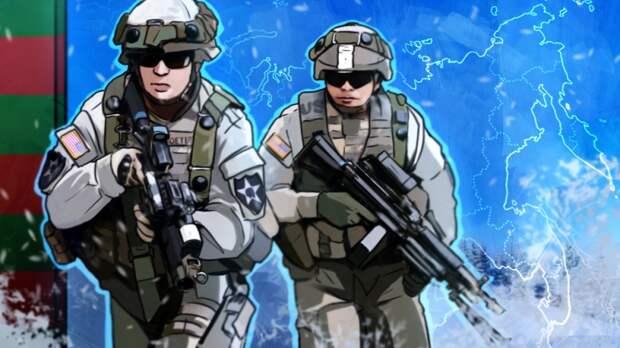 Полковник Литовкин растолковал туманную цель НАТО на учениях под Львовом