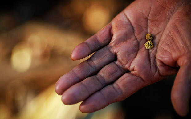 10 рек в России, где можно намыть золото