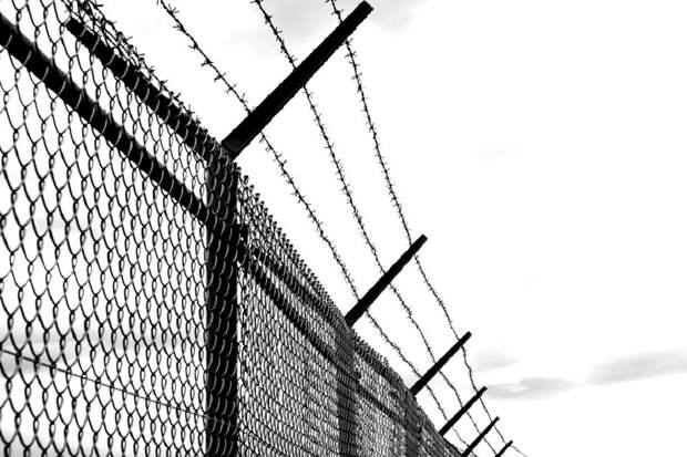 Поток мигрантов из Белоруссии заставил власти Литвы возвести стену на границе