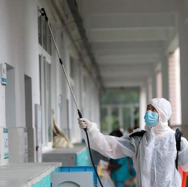 Daily Caller: жена вирусолога из Уханя умерла от коронавируса до начала пандемии