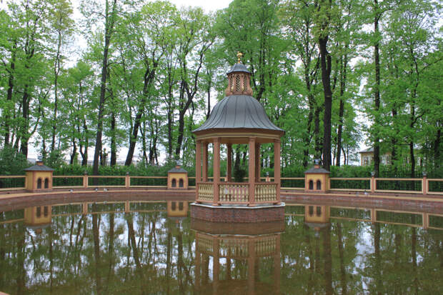 Майская зелень в парках и садах Петербурга