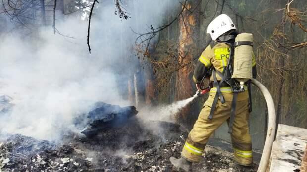 Лесной пожар в Удмуртии уничтожил баню и постройку на пасеке у деревни Поварёнки