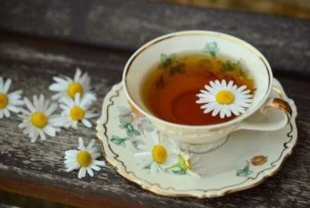 Пьём калмыцкий чай и занимаемся скандинавской ходьбой