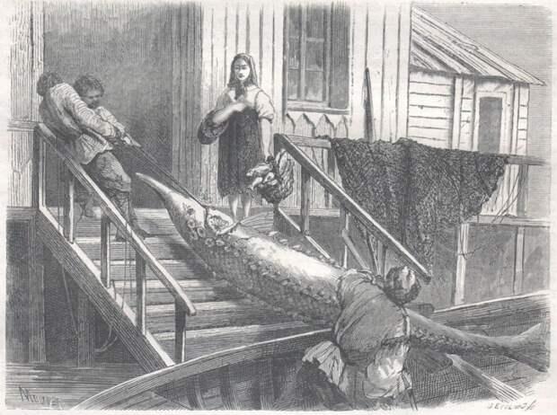 Что русскому хорошо… Зарисовки иностранцев, побывавших в России в середине XIXвека