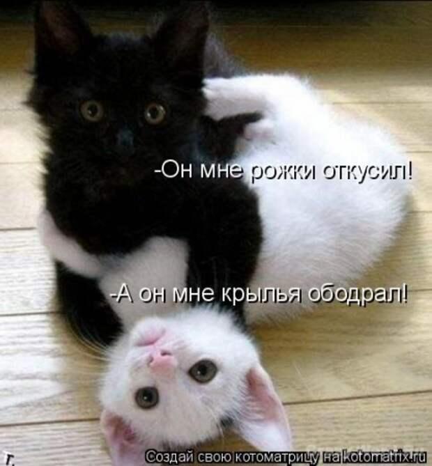 Давайте улыбаться вместе :)