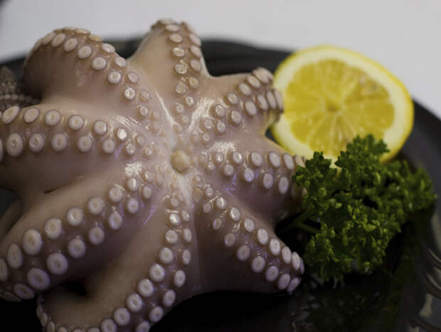20 простых хитростей для приготовления морепродуктов