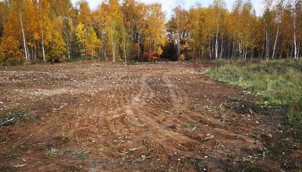 В Подольске приступили к уборке незаконной свалки возле деревни Наумово