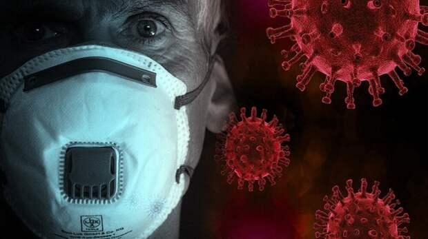 44 новых случая коронавируса выявили в Севастополе