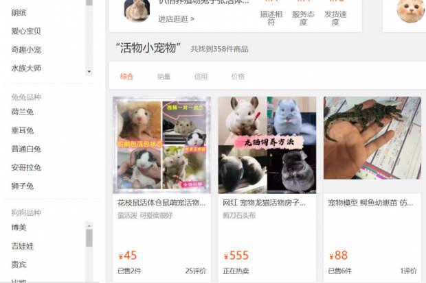 Курьерские компании в Китае пересылают живых животных в запечатанных коробках