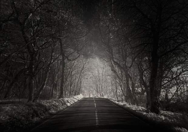 terraoko 2015011202 3 Темные и одинокие дороги мира.