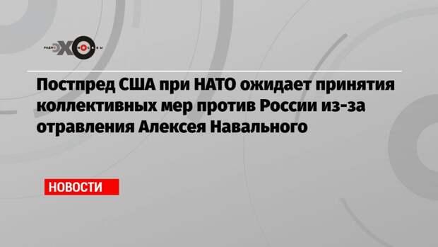 Постпред США при НАТО ожидает принятия коллективных мер против России из-за отравления Алексея Навального