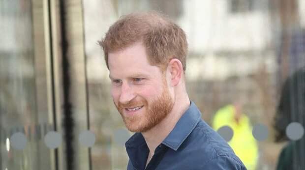 """""""Как в зоопарке"""": принц Гарри пожаловался на свои страдания в королевской семье"""
