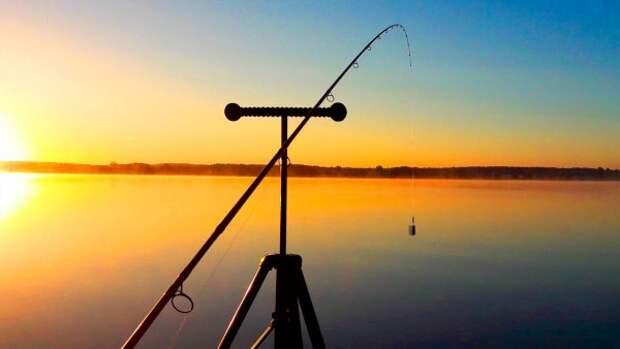 В Бобруйском районе пройдет открытое первенство по лову рыбы фидером ´Речной тандем 2021´.