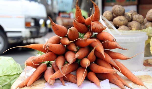 Морковь подешевела вВолгоградской области