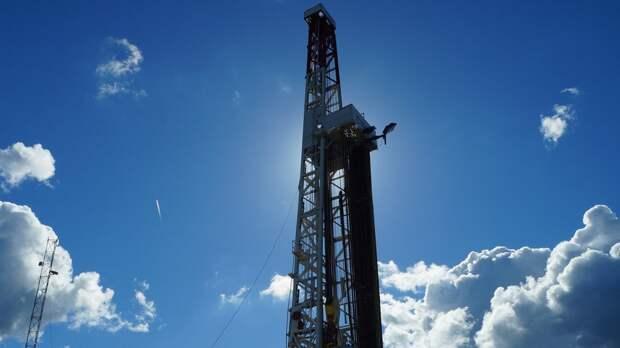Глава Минприроды оценил объемы запасов нефти и газа в России