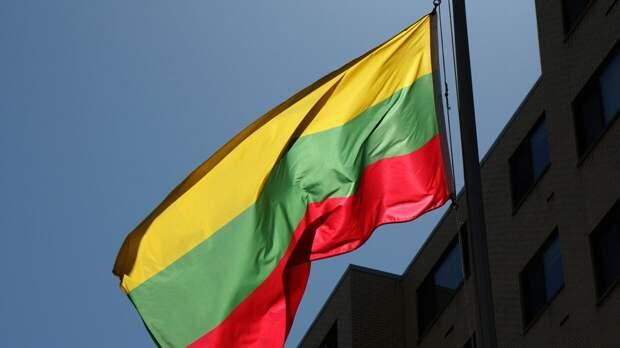 Литовцы призвали военных  НАТО ответить перед законом за беспорядки