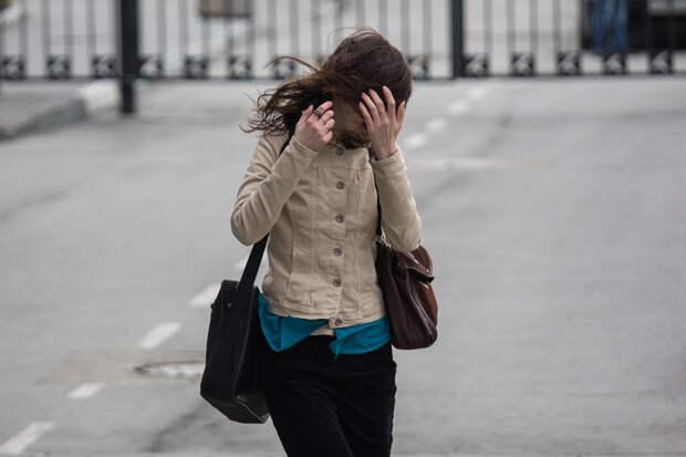 Порывы до 23 м/с: МЧС выпустило экстренное предупреждение об усилении ветра для новосибирцев