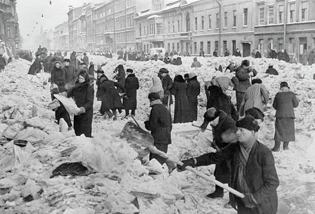 """Блокада Ленинграда, """"доска Маннергейма"""" и забытые уроки истории"""