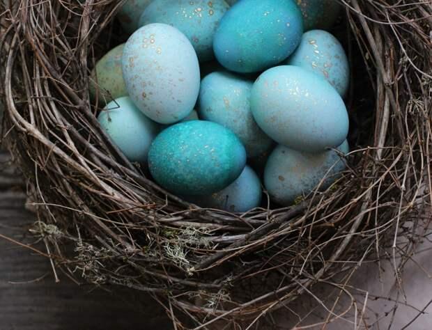 Картинки по запросу покрасить яйца на пасху