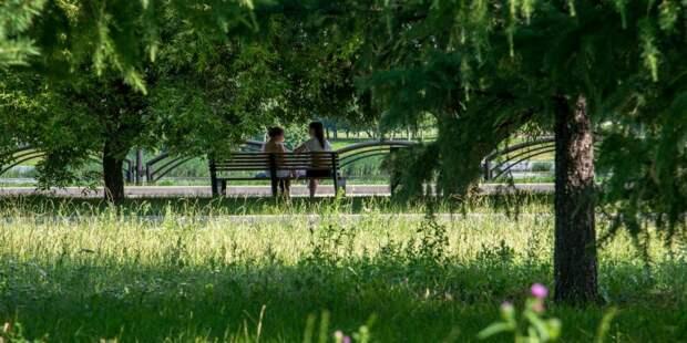В Щукине станет больше мест для прогулок и отдыха