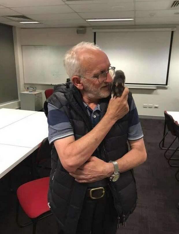 История бездомного Криса и крысы Люси : продолжение в мире, добро, история, крыса, люди, находка, полиция
