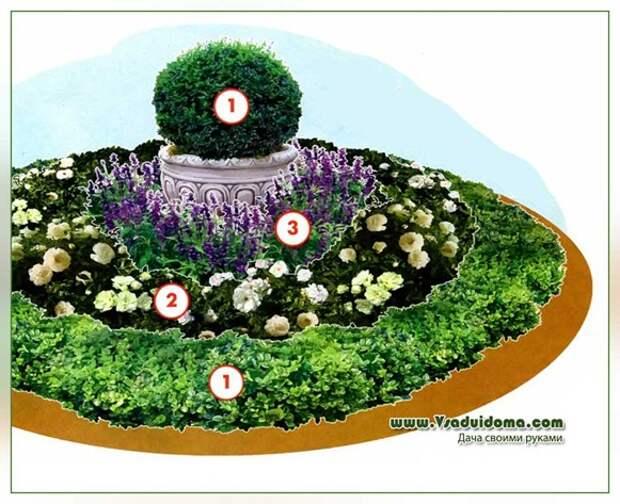 Круглая клумба своими руками и растения для нее