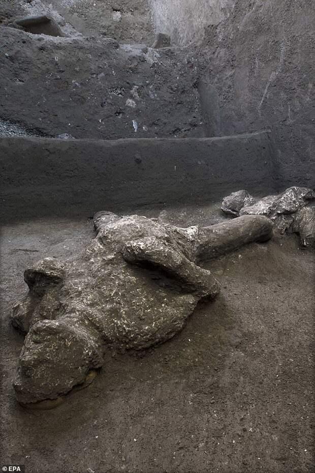 Замороженные во времени: на вилле Помпеи обнаружены останки погибших при извержении Везувия Помпеи, Последний день Помпеи, Находка, Длиннопост, Везувий