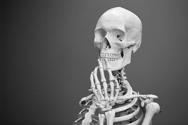 Почему человеческое тело никогда по-настоящему не исчезает
