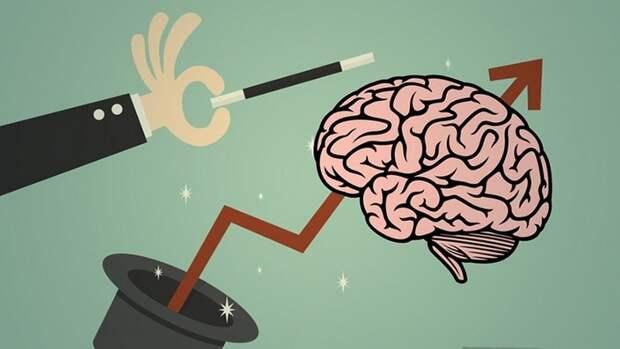 10 процессов, которые мозг запускает и контролирует помимо нашей воли