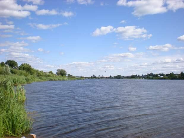 В Удмуртии добровольцы спасли женщину, пытавшуюся переплыть пруд