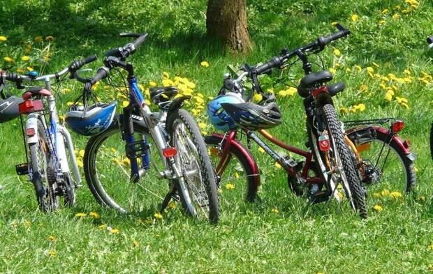 В Ростове-на-Дону предлагают ввести запрет на езду велосипедистов в центре города