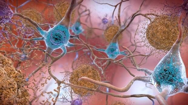 Я нейробиолог, и я знаю, что для того, чтобы изменить мозг, нужно 5 минут в день