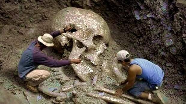 Копали могилу, а выкопали кости великана, который жил еще 200 лет назад