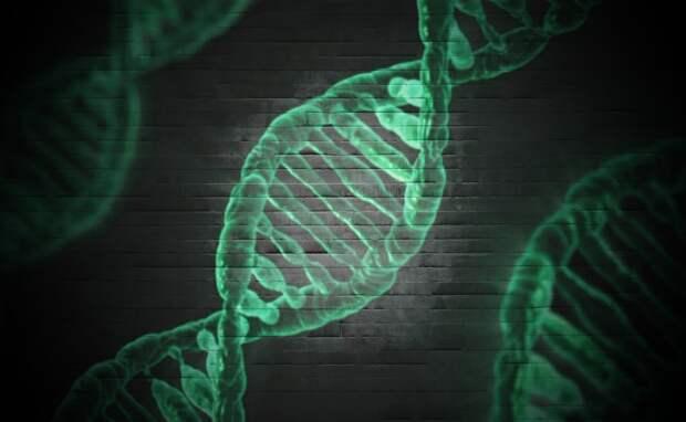 Новый метод довел карманный секвенатор ДНК до почти идеальной точности