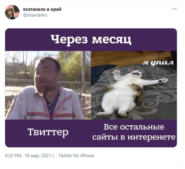 Фото №9 - Лучшие шутки про блокировку «Твиттера»